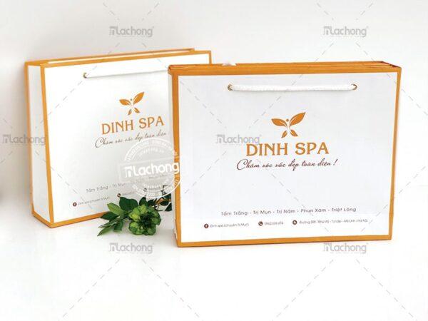 Mẫu túi giấy PR tuyệt vời cho thương hiệu Dinh Spa