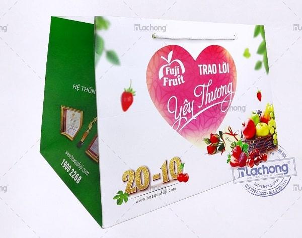 Sản xuất túi giấy đựng hoa quả Fuji Fruit