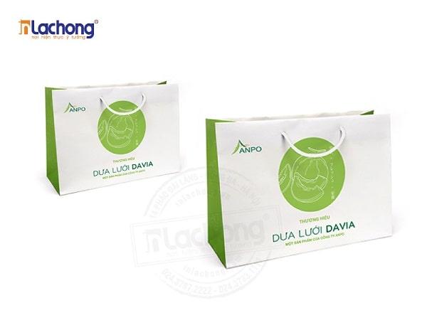Mẫu túi giấy đựng trái cây dưa lưới DAVIA