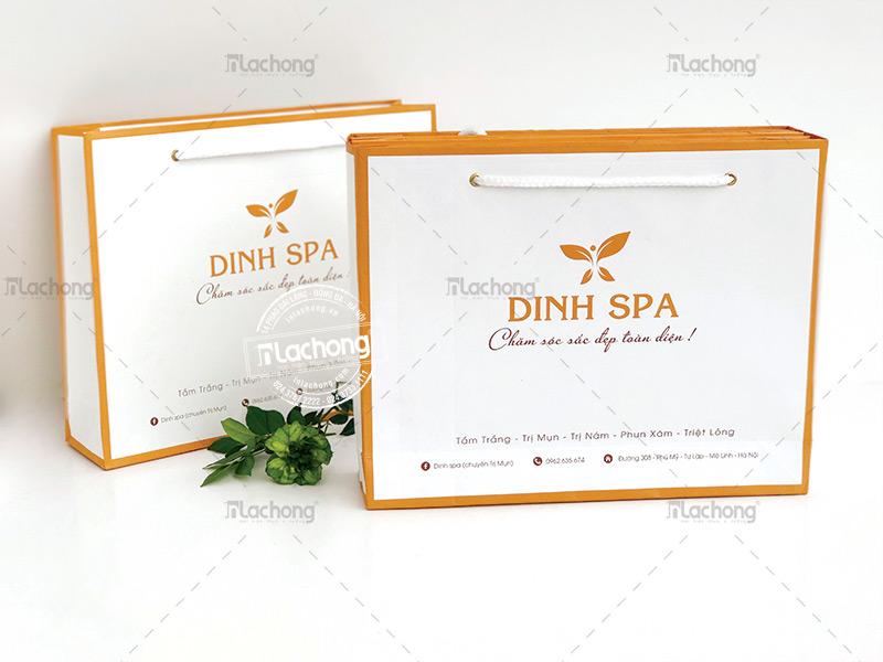 In logo cho túi giấy DINH SPA, sự kết hợp màu sắc khéo léo trong thiết ế của Lạc Hồng