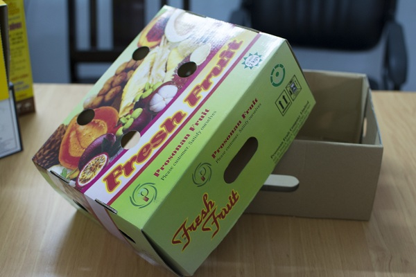 Thiết kế vỏ hộp đựng trái cây theo quy cách âm dương, có tay cầm hai bên, thuận tiện cho khâu đóng, mở hộp