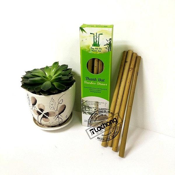 Hộp giấy đựng ống hút thân thiện với môi trường